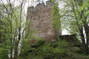 Burgruine Hardneidstein
